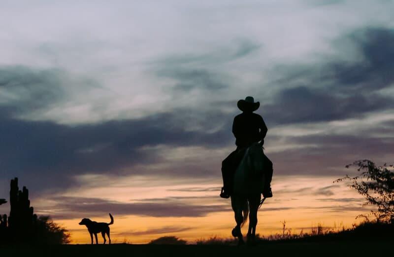 Cowboy - © Juanjo Menta, Pexel